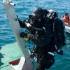 Diver - Diver leaving the water from ladder on back of dive vessel.  <li><em><strong><li>Crispin Sadler</li></em></strong>
